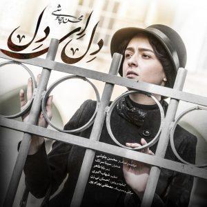 Mohsen Chavoshi ft. Sina Sarlak - Del Ey Del